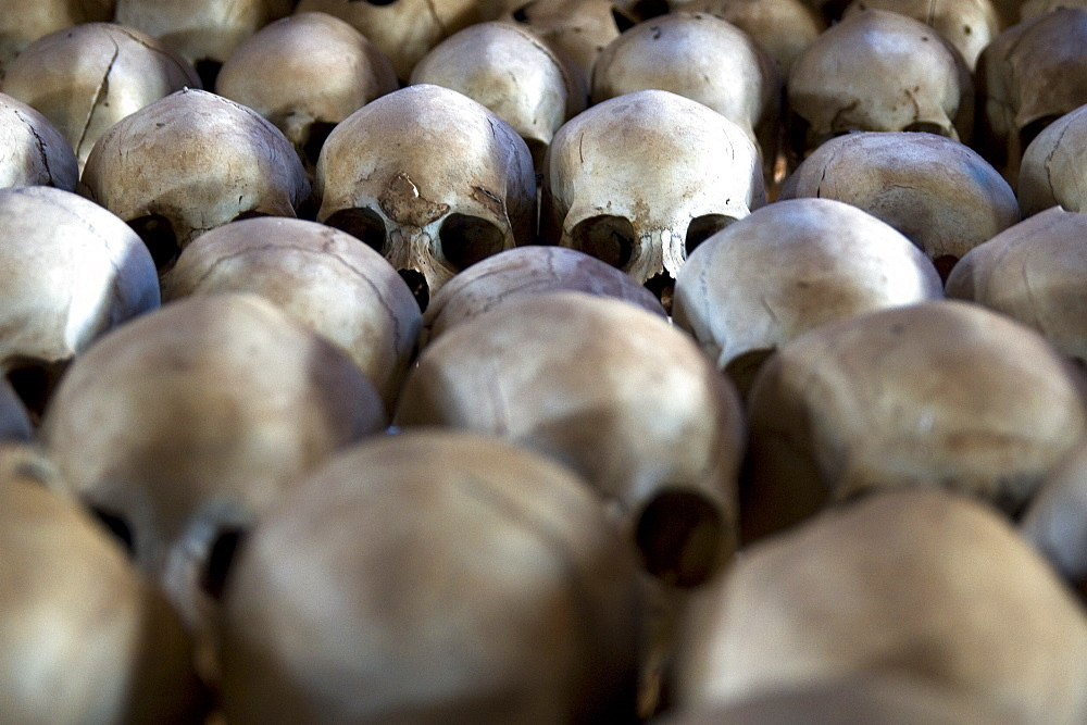 Skulls of genocide victims at the Ntarama Church memorial, south of Kigali, Rwanda - 1005-111