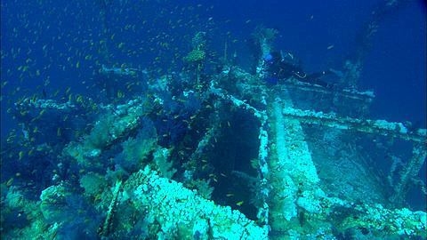 Wreck dive, Egypt, Red Sea