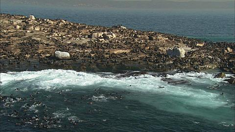 Aerial, Simonstown, Seal Island. South Africa