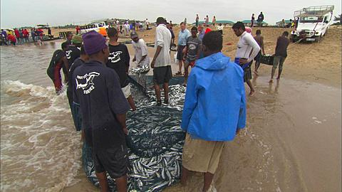 Sardine Run, boys holding fish in nets, South Africa