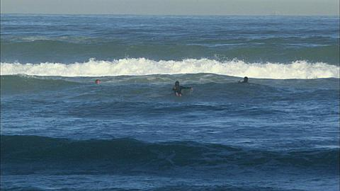 Surfers, boys on body boards head out to sea, Muizenberg Beach, Cape Town, South Africa