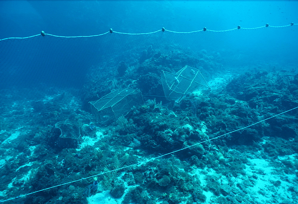 Drift net and fish traps. Indo Pacific
