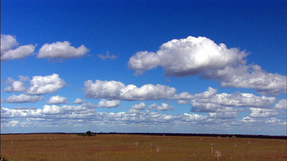 Clouds over sawgrass prairie. Everglades NP, Florida, USA