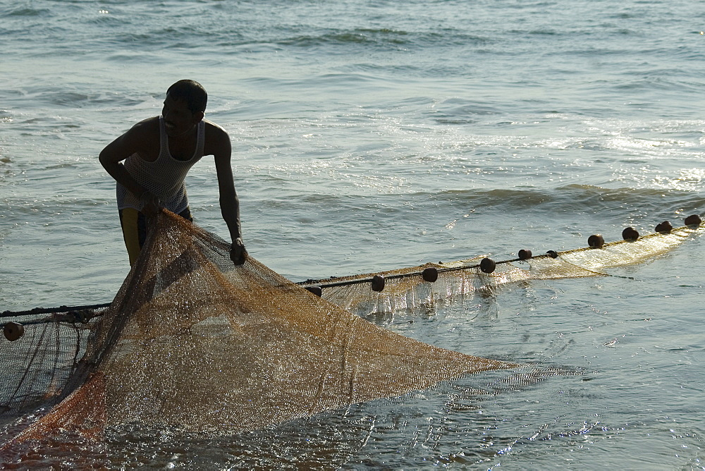 Fisherman hauling in the fishing net on the beach, Goa, India