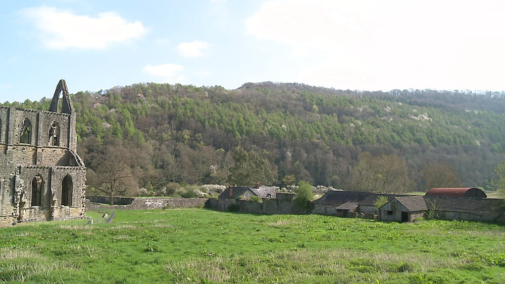 (wide shot) side of abbey with forest behind, (medium close up) outbuilding, Tintern, Wales, United Kingdom, Europe