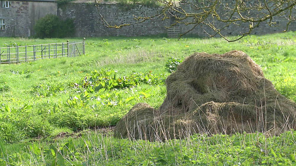 hay stack (close up), po & pull ins to & from abbey, Tintern, Wales, United Kingdom, Europe