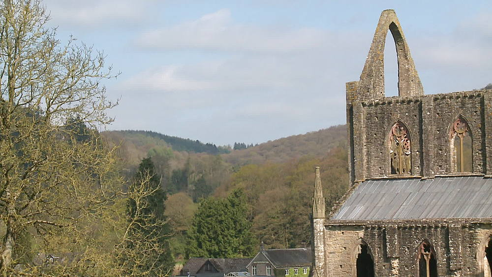 (wide shot) Abbey ed and wooded valley, Tintern, Wales, United Kingdom, Europe