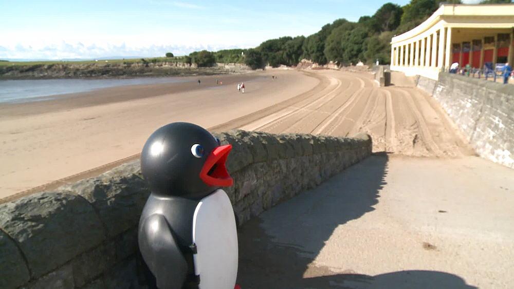 ws penguin bin, beach and shelter - 1031-2227
