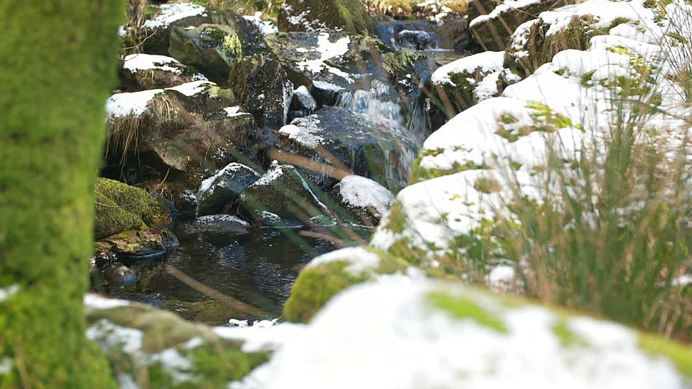 stream and snow - 1031-2351