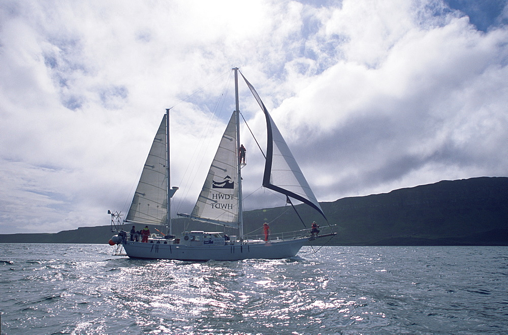 Whale biologists working from research yacht, Silurian, in the Hebrides, Scotland. - 1036-213