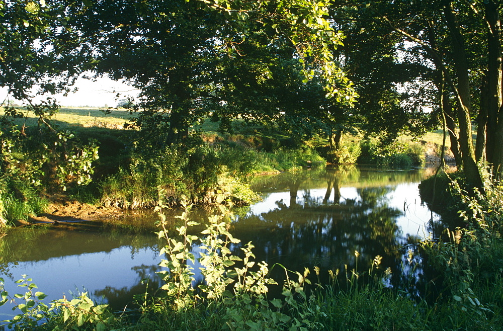 Sussex river. UK - 1036-272