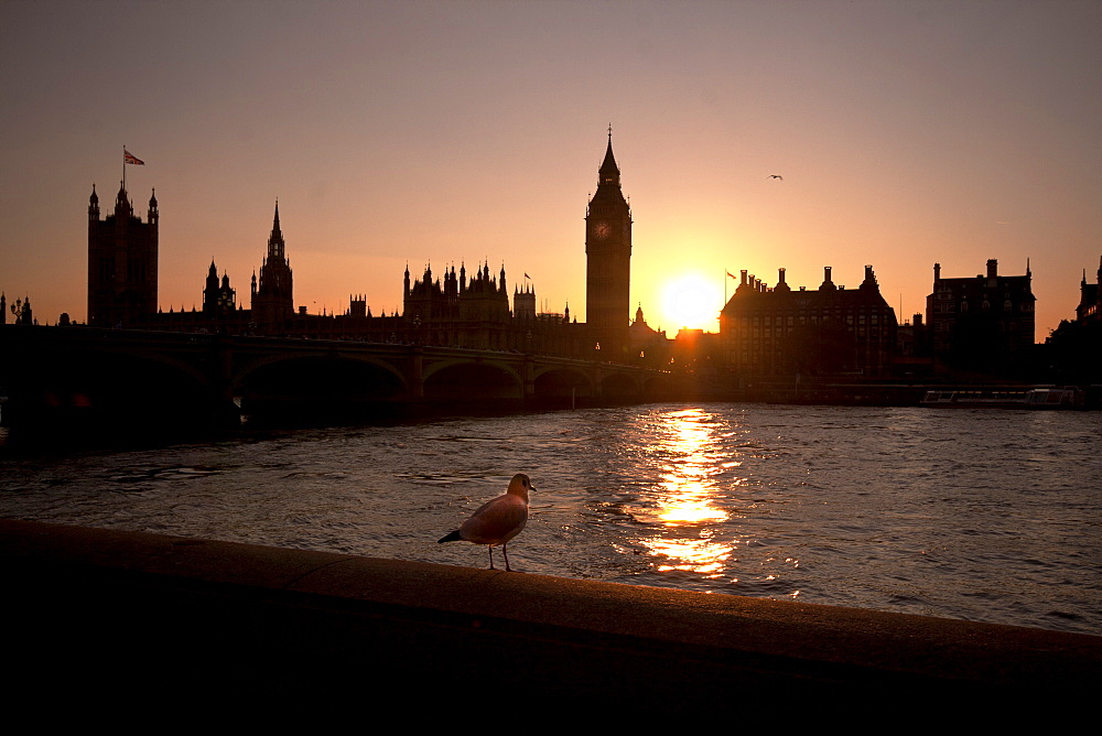 Sunset over Westminster Bridge, Houses of Parliament and Big Ben, UNESCO World Heritage Site, London, England, United Kingdom, Europe - 1061-29