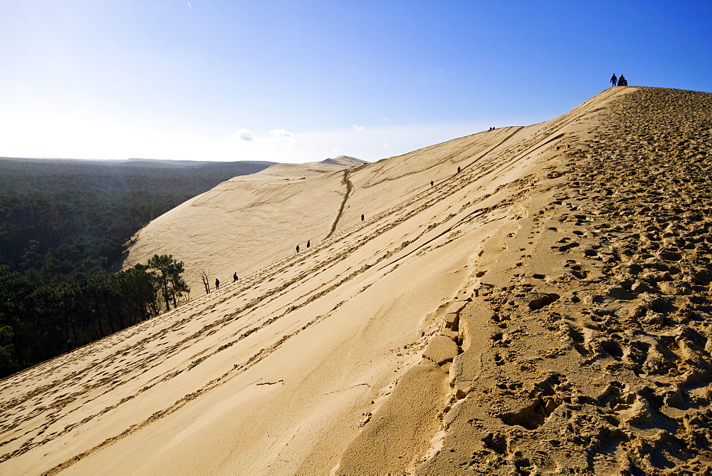 Pilat Dune in Test-de-Buch, at 110 m high, the highest sand dune in Europe, Nouvelle Aquitaine, France, Europe