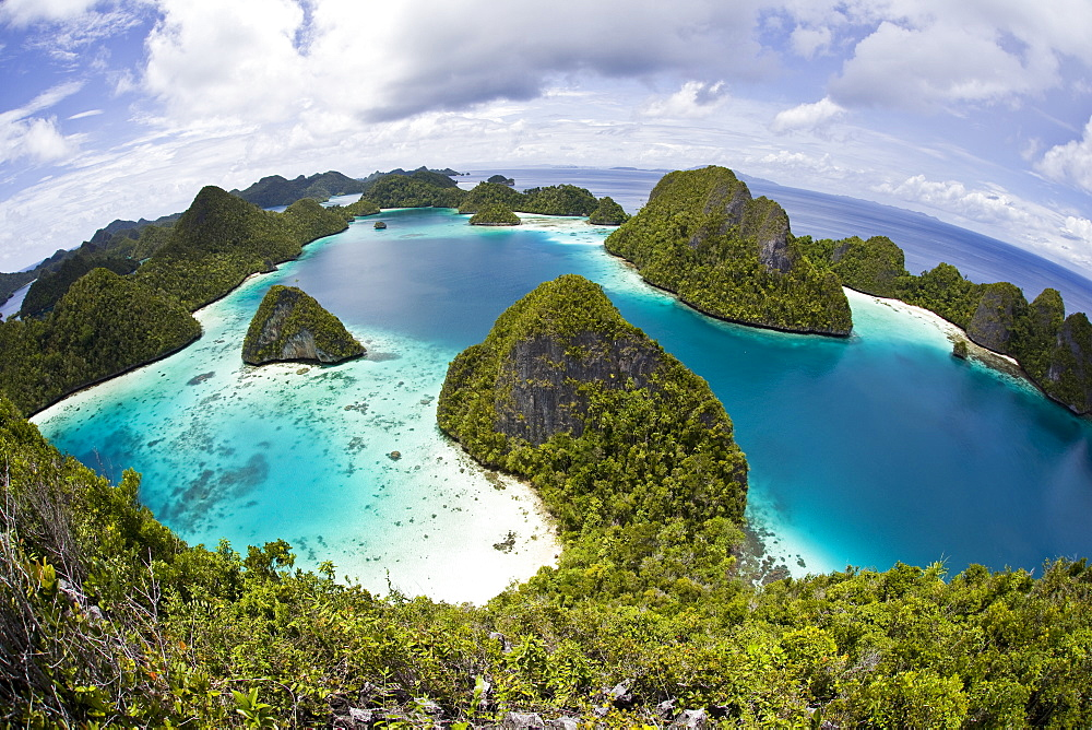 Limestone islands and lagoon.  Wayag, Raja Ampat, Papua, Indonesia, Pacific Ocean.  More info:  These islands are uplifted coral reefs now covered by vegetation. - 1067-43