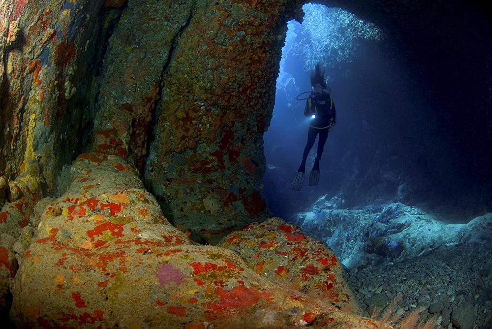 Diver in cave, British Virgin Islands - 1072-102