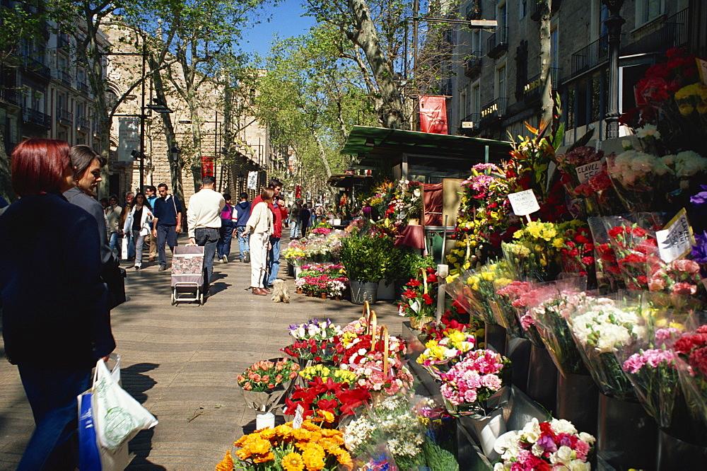 Las Ramblas flower stall, Barcelona, Catalonia, Spain, Europe - 11-258