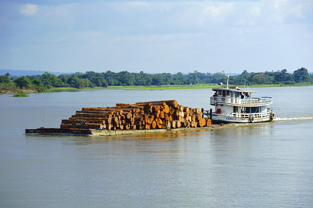 Transporting logs on the Curua-Unn River, near Amazon, Brazil, South America - 110-10044