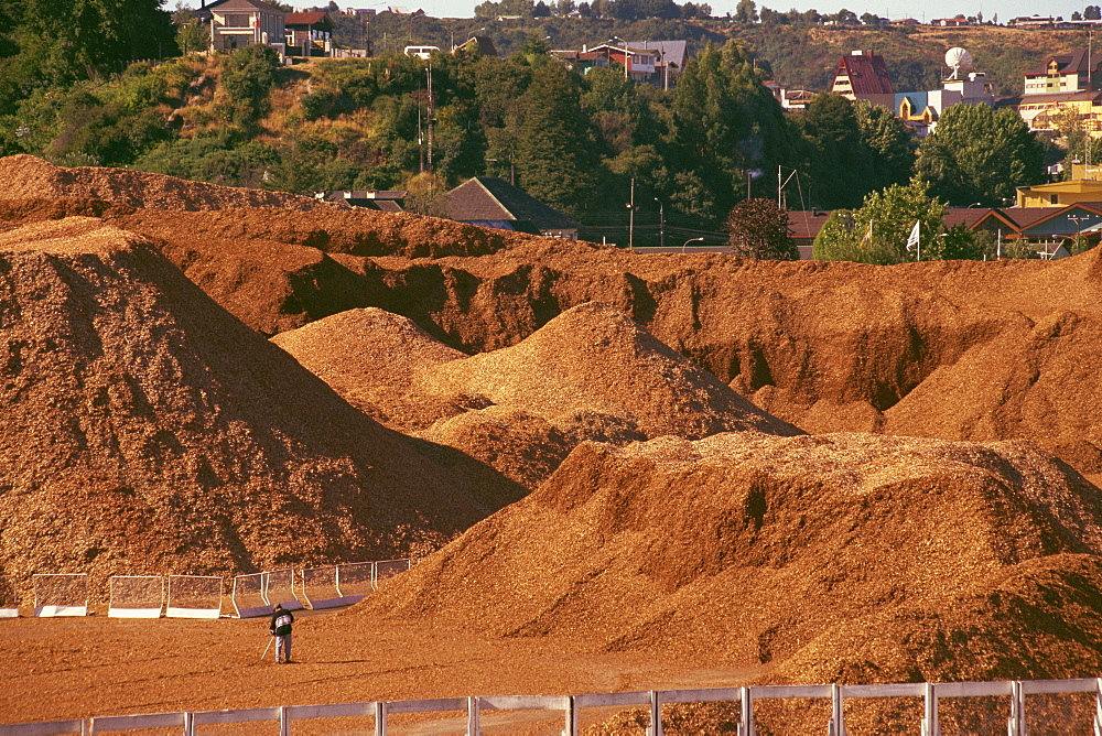 Woodchip stockpile for export to Japan, Puerto Montt, Chile, South America - 110-16183