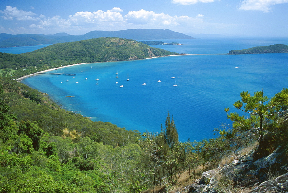 View over Bauer Bay, South Molle Island, Whitsundays, Queensland, Australia, Pacific