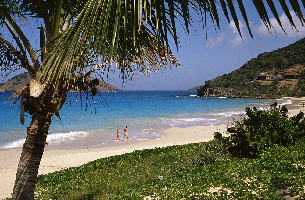 Beach at Anse des Flamands, St. Barts (St. Barthelemy), West Indies, Caribbean, Central America - 110-7395
