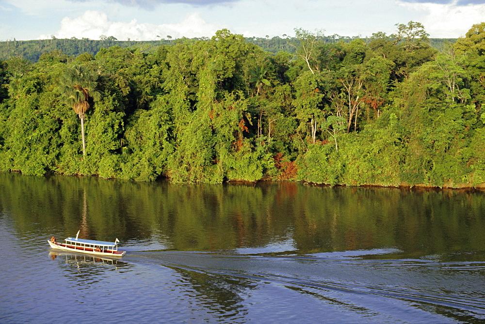 Jari River, Amazon area, Brazil, South America - 110-9872