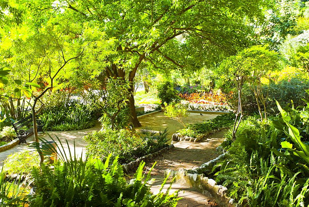 Alameda Gardens, Gibraltar, Europe - 1102-39