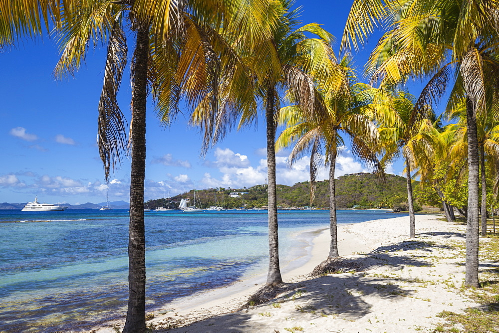 Brittania Bay beach, Mustique, The Grenadines, St. Vincent and The Grenadines, West Indies, Caribbean, Central America