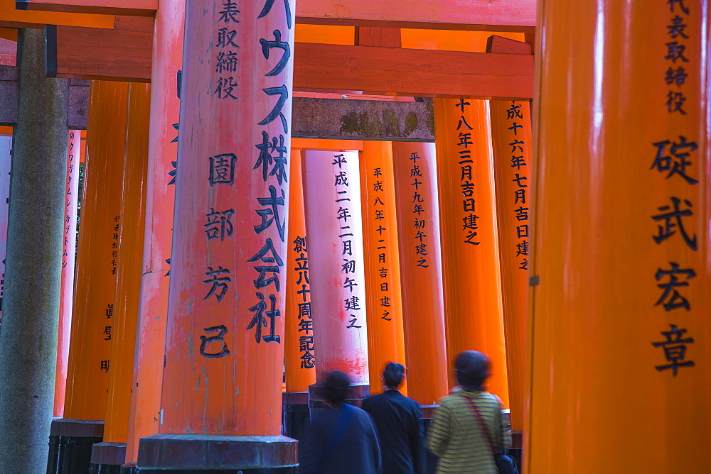 Japan, Kyoto, Fushimi Inari Shrine, Vermilion torii gates, Donated and inscribed by businesses and individual - 1104-1294