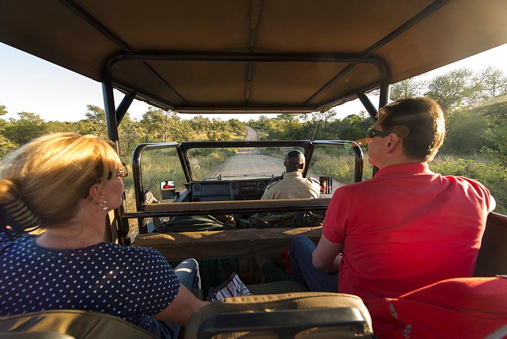 Game drive, Kruger National Park, South Africa, Africa - 1108-24