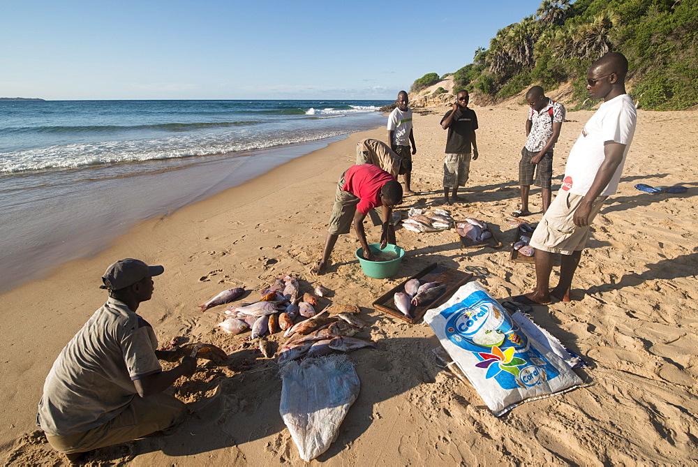 Tofo Beach, Mozambique, Africa - 1108-37