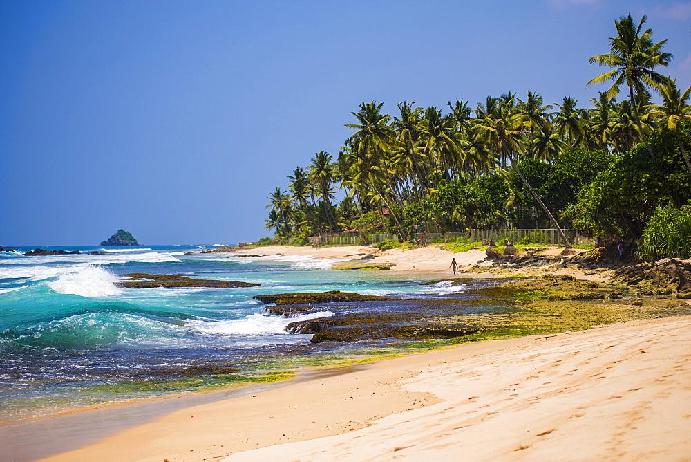 Midigama Beach, a tropical, palm tree lined beach near Weligama on the South Coast of Sri Lanka, Indian Ocean, Asia