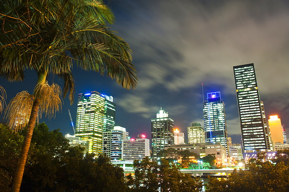 Palm tree and Brisbane skyline at night, Brisbane, Queensland, Australia, Pacific
