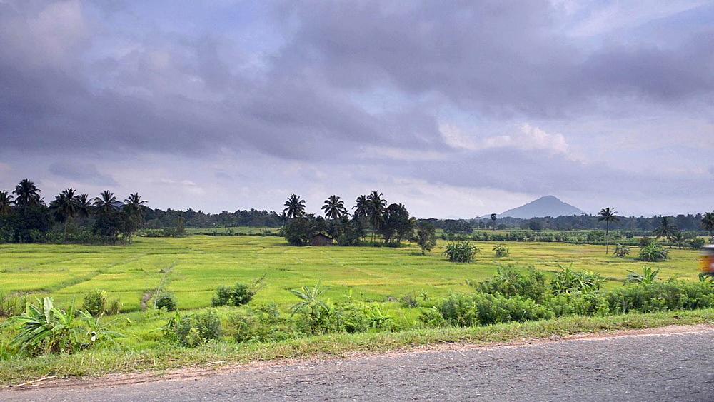 Motor bike and tuktuk on a rural road near Dambulla, Central Province, Sri Lanka, Asia
