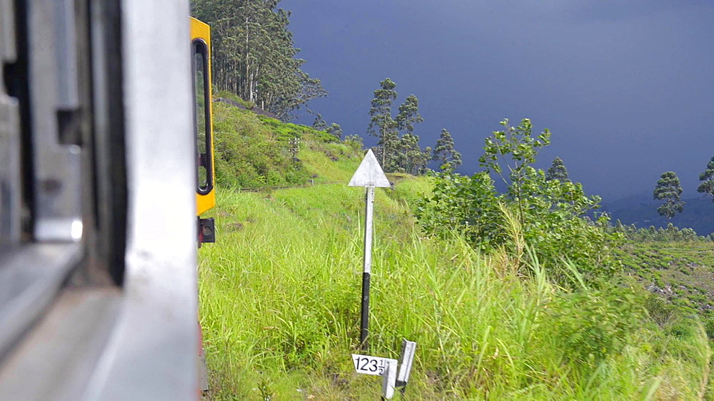 Train journey through tea plantations, Haputale, Sri Lanka Hill Country, Nuwara Eliya District, Sri Lanka, Asia