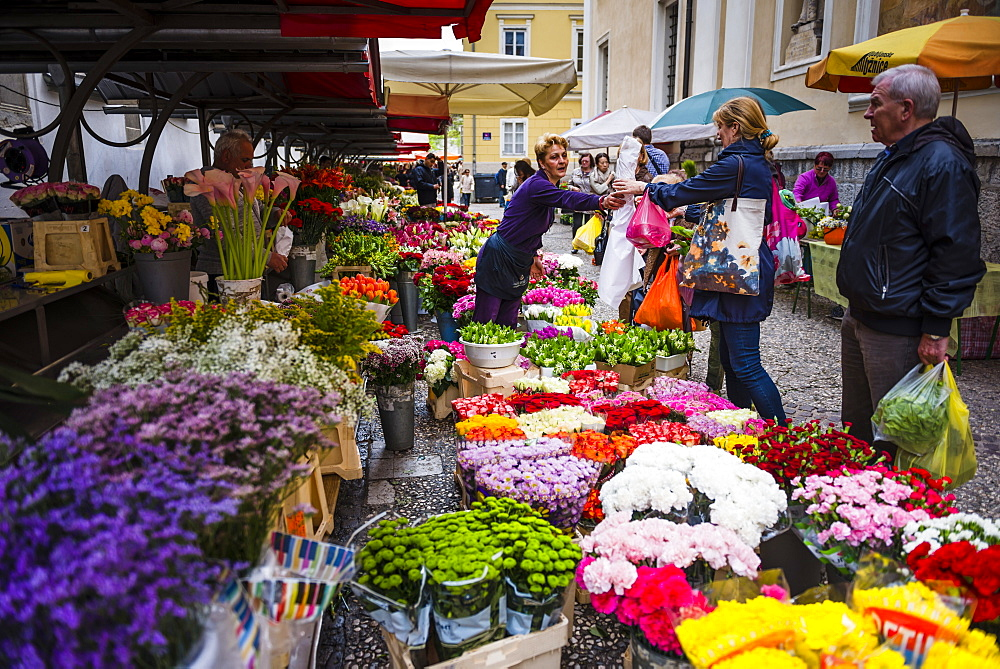 Flower stall owner in Ljubljana Central Market on a Saturday in Vodnikov Trg, Ljubljana, Slovenia, Europe