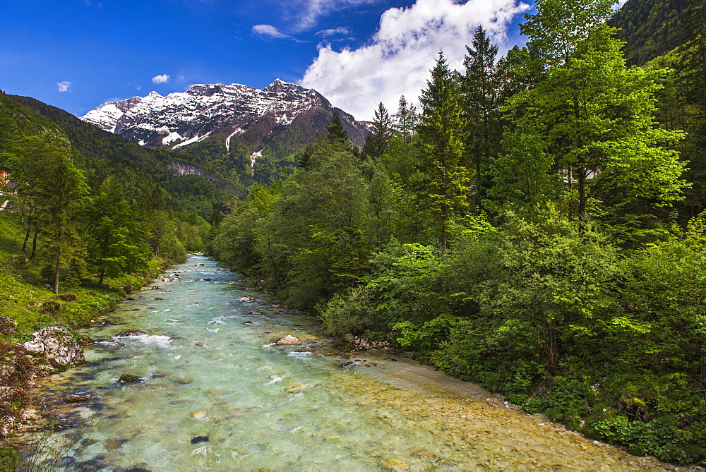 Soca River and Julian Alps in the Soca Valley, Triglav National Park (Triglavski Narodni Park), Slovenia, Europe