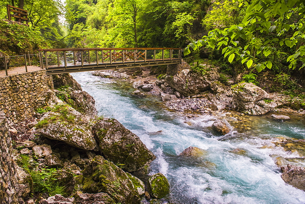 Bridge across the Zadlascica River Canyon, Tolman Gorges, Triglav National Park, Slovenia, Europe