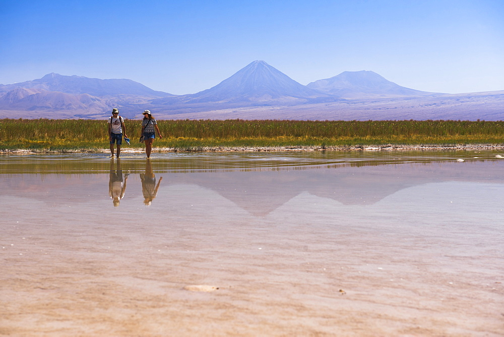 Laguna Cejar (floating salt lake lagoon), with Licancabur Volcano and Juriques Volcano behind, Atacama Desert, North Chile, Chile, South America