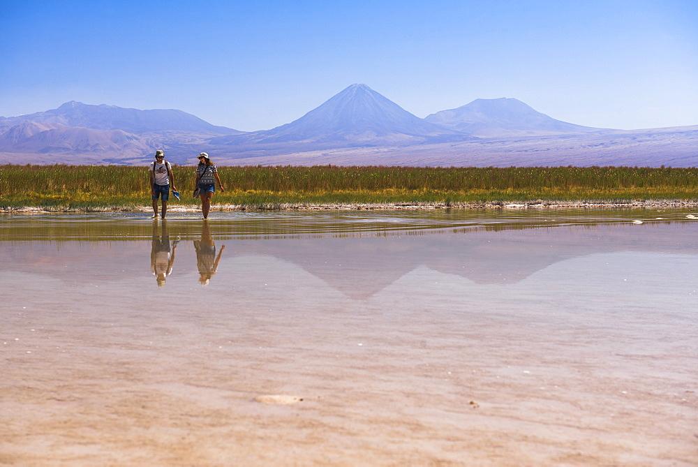 Laguna Cejar (floating salt lake lagoon), with Licancabur Volcano and Juriques Volcano behind, Atacama Desert, North Chile, Chile, South America