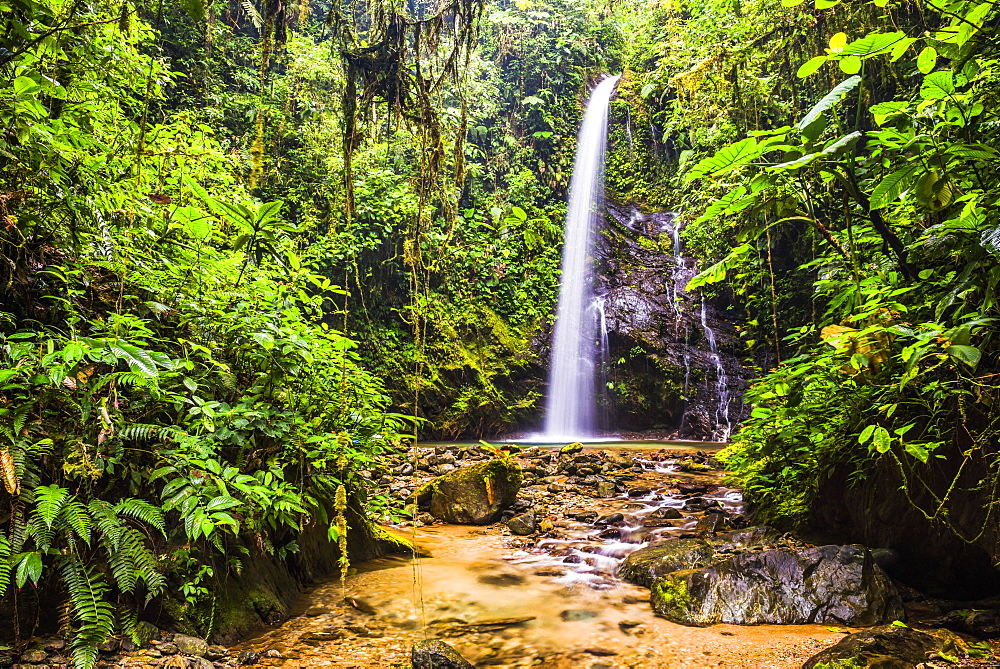 Waterfall San Vincente in an area of jungle called Mashpi Cloud Forest in the Choco Rainforest, Ecuador, South America