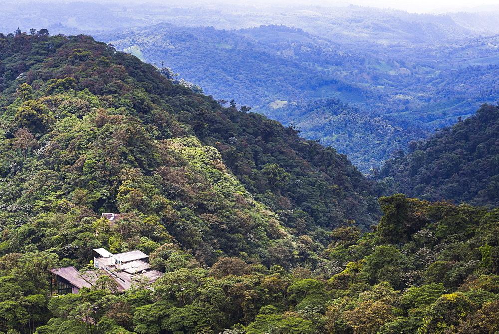 Mashpi Lodge, Choco Cloud Forest, a rainforest in the Pichincha Province of Ecuador, South America