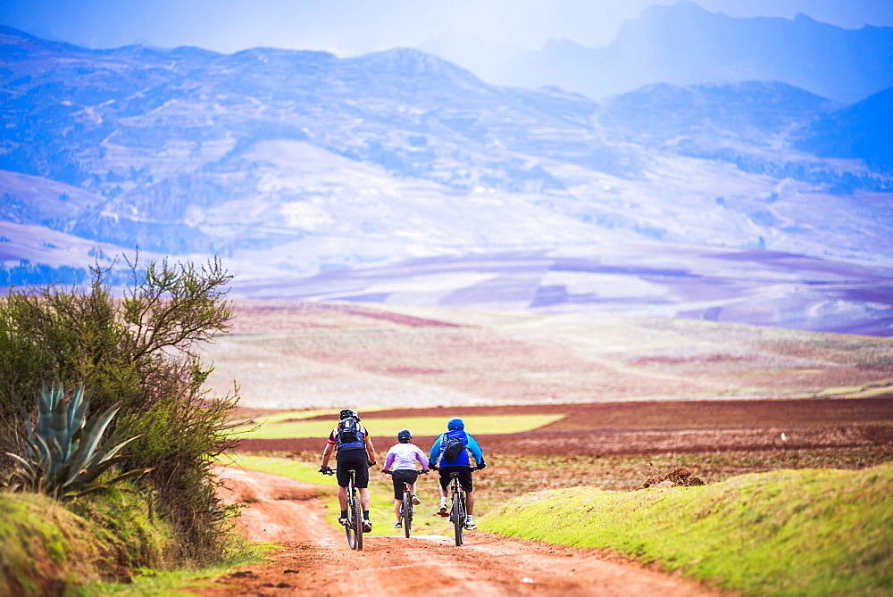Cusco (Cuzco), cycling in the countryside near Maras, Cusco Province, Peru, South America