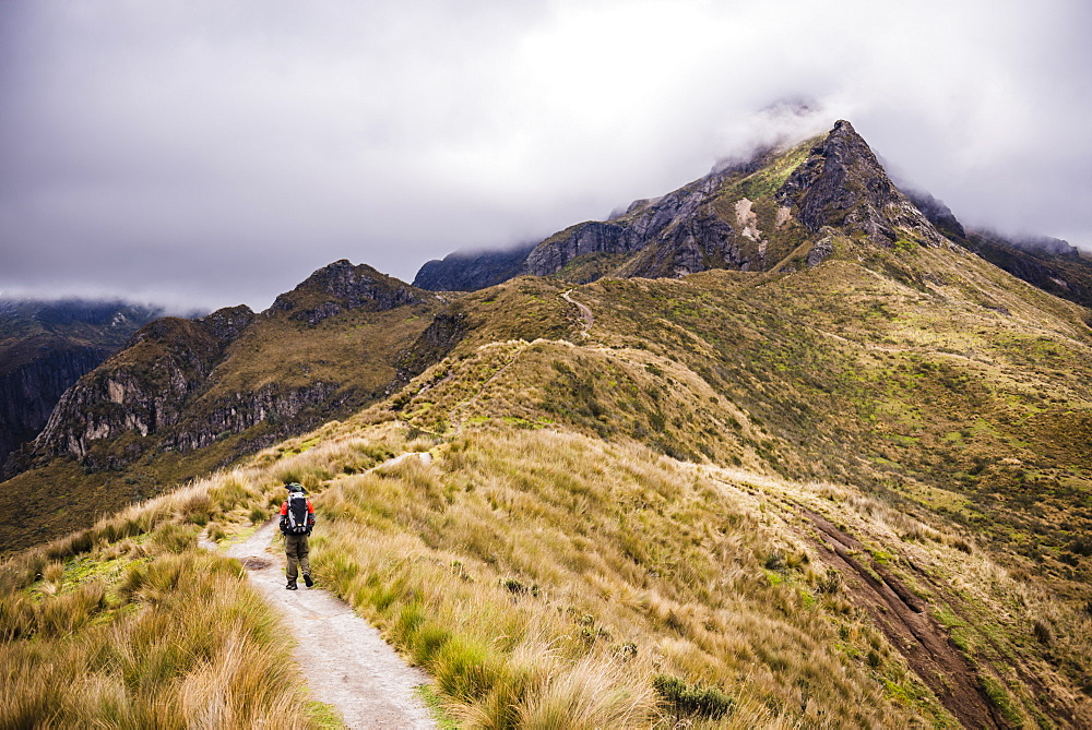 Hiker trekking Rucu Pichincha Volcano, Quito, Pichincha Province, Ecuador, South America