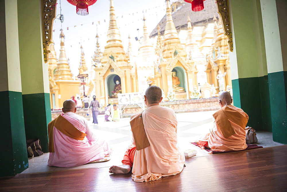 Buddhist Nuns praying at Shwedagon Pagoda (Shwedagon Zedi Daw) (Golden Pagoda), Yangon (Rangoon), Myanmar (Burma), Asia