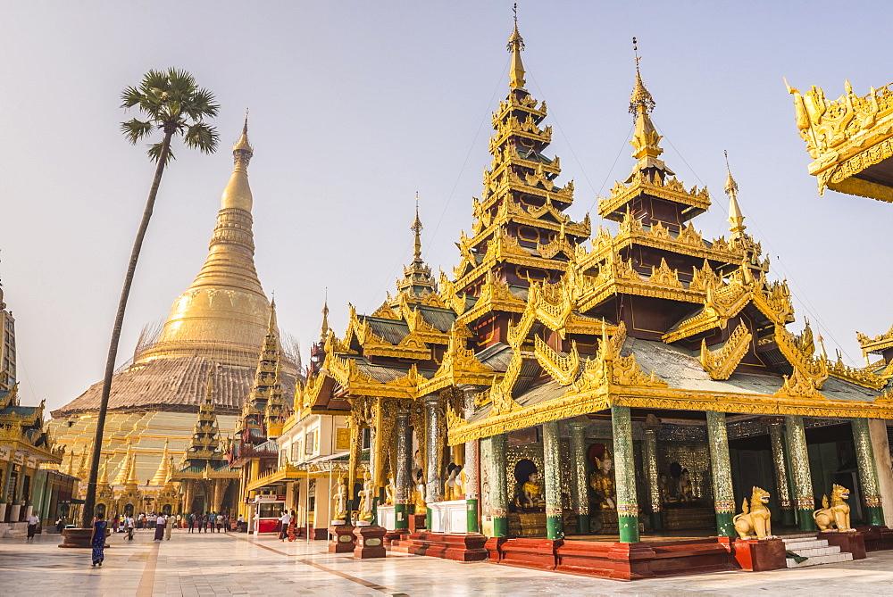 Shwedagon Pagoda (Shwedagon Zedi Daw) (Golden Pagoda), Yangon (Rangoon), Myanmar (Burma), Asia