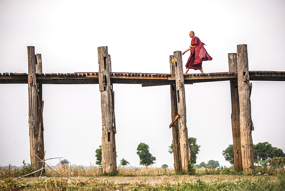 Buddhist Monk on U Bein Teak Bridge, a 1.2km wooden bridge, Mandalay, Mandalay Region, Myanmar (Burma), Asia