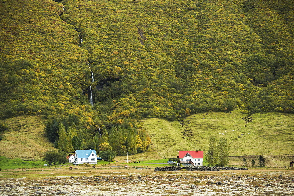 Hamlet near Vik, South Region (Sudurland), Iceland, Polar Regions