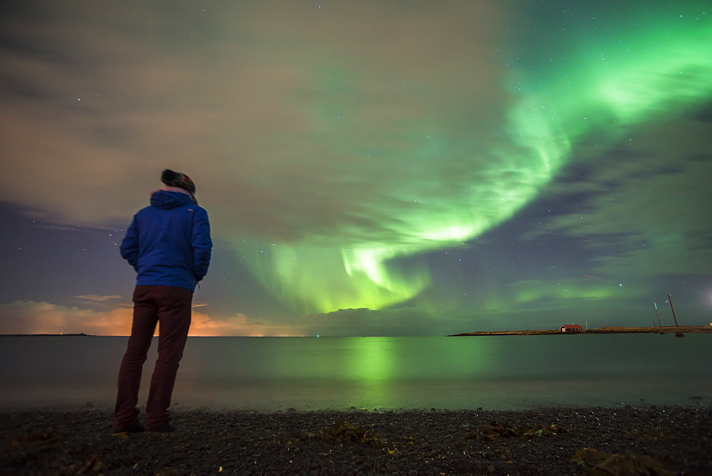 Tourist watching the Northern Lights (Aurora Borealis), Reykjavik, Iceland, Polar Regions