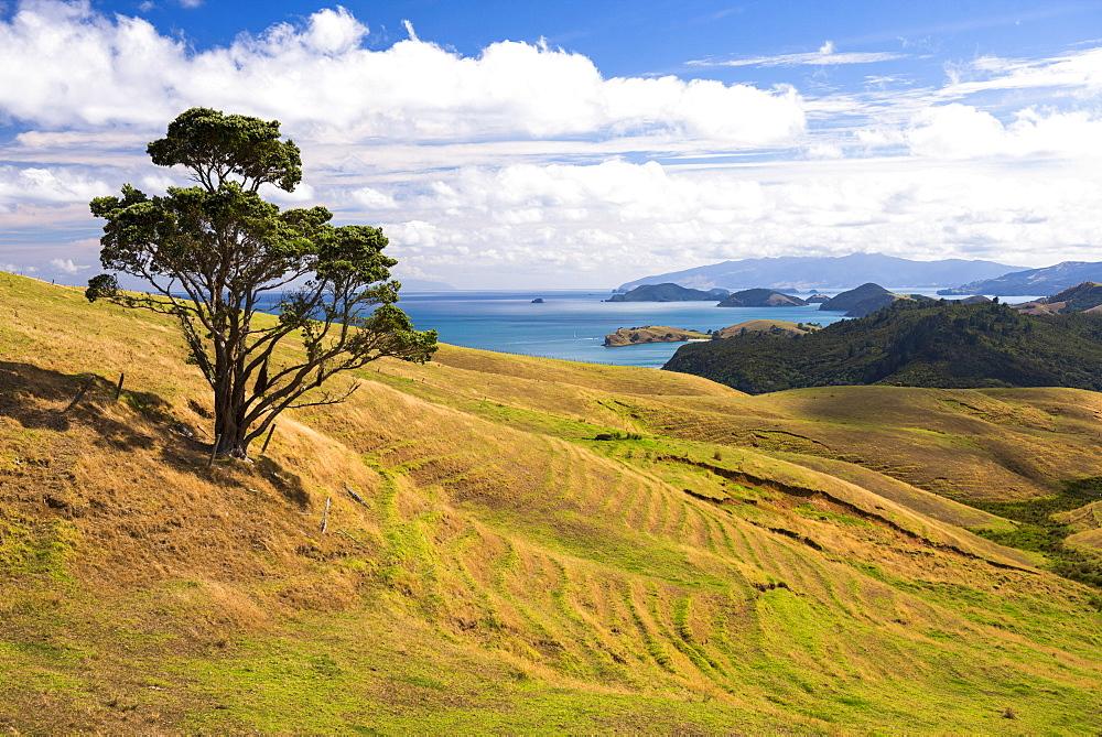 West Coast of Coromandel Peninsula, North Island, New Zealand, Pacific