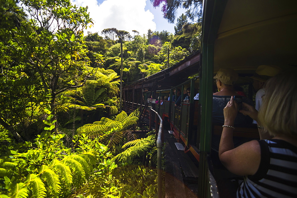 Driving Creek Railway, Coromandel Town, Coromandel Peninsula, North Island, New Zealand, Pacific - 1109-2787